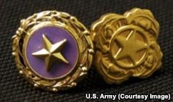 gold star lapel