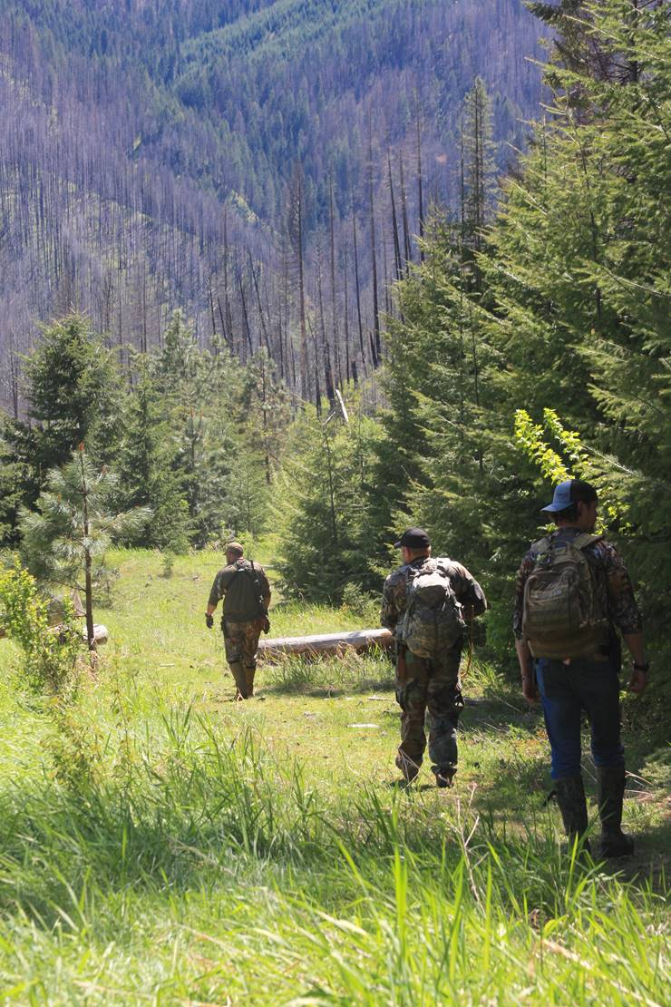 Hope For The Warrior volunteer Dave Williams leads two veterans on a five mile hike through an Idaho forest. For more photos, visit: http://bit.ly/2uUnCxw.