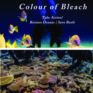 Colour Bleach